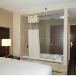 Days Inn JFK Airport King Bedroom with shower and hot tub inside